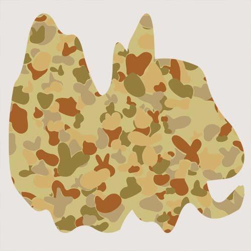 Australian AUSCAM Desert DPMU MID-POINT