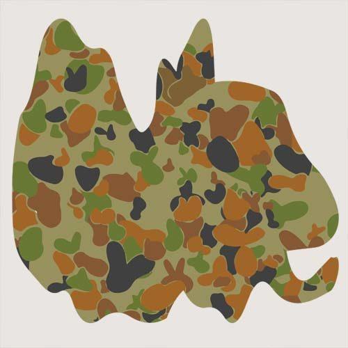 Australian AUSCAM DPC