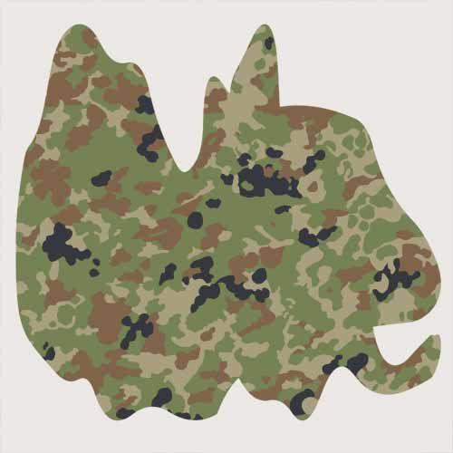 Japanese JSDF Jietai